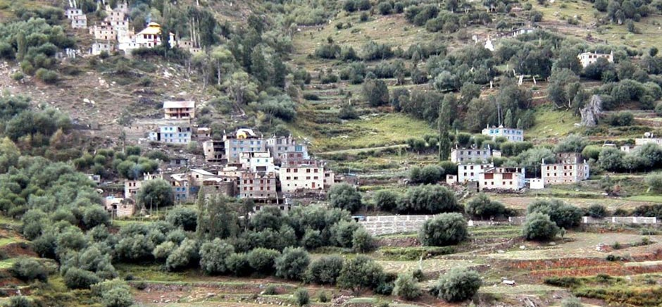 Houses in Keylong, HImachal Pradesh