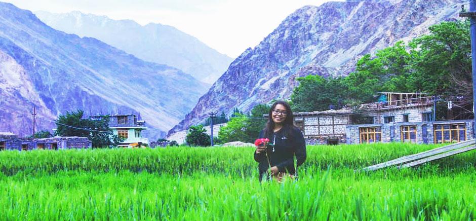 Green Fields of Turtuk Village, Leh Ladakh