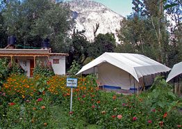 Organic Retreat Camp